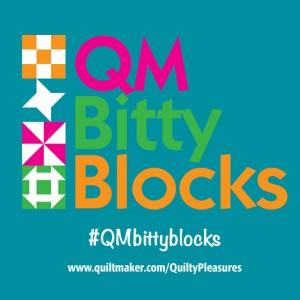 BB square1 300x300 QM Bitty Blocks: I Heart This One!