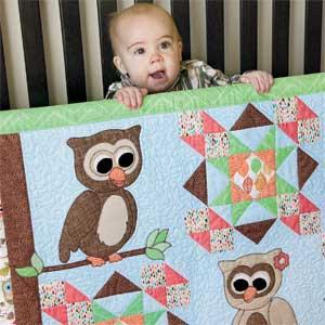 Cute Hoots: Quick Adorable Fusible-Appliqu Owl Baby Quilt Pattern ... : owl pattern quilt - Adamdwight.com