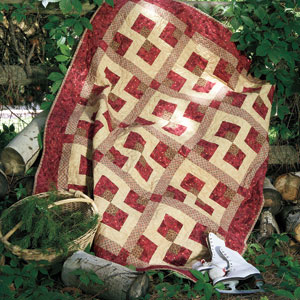 Party of Four: Super-Fast 4-Fabric Throw Quilt Pattern - The ... : quilt throw - Adamdwight.com