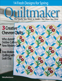 QMMP 150200 cover 200 Walk in the Park Mystery Quilt, Part 1