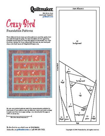 Crazy Bird Foundations