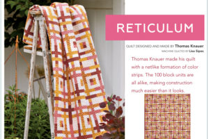 Reticulum by Thomas Knauer, one of our favorite jelly rolls fabric patterns.
