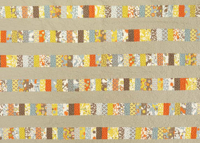 Strip Quilting: Stacked Coins Quilt by Aimee Raymond