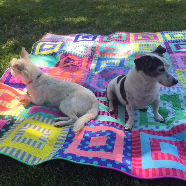 i-love-this-quilt-pom-pom-picnic-3-jasper-and-izzy