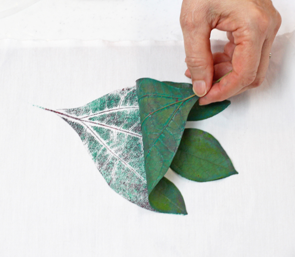 Gently pull the leaf up by the stem