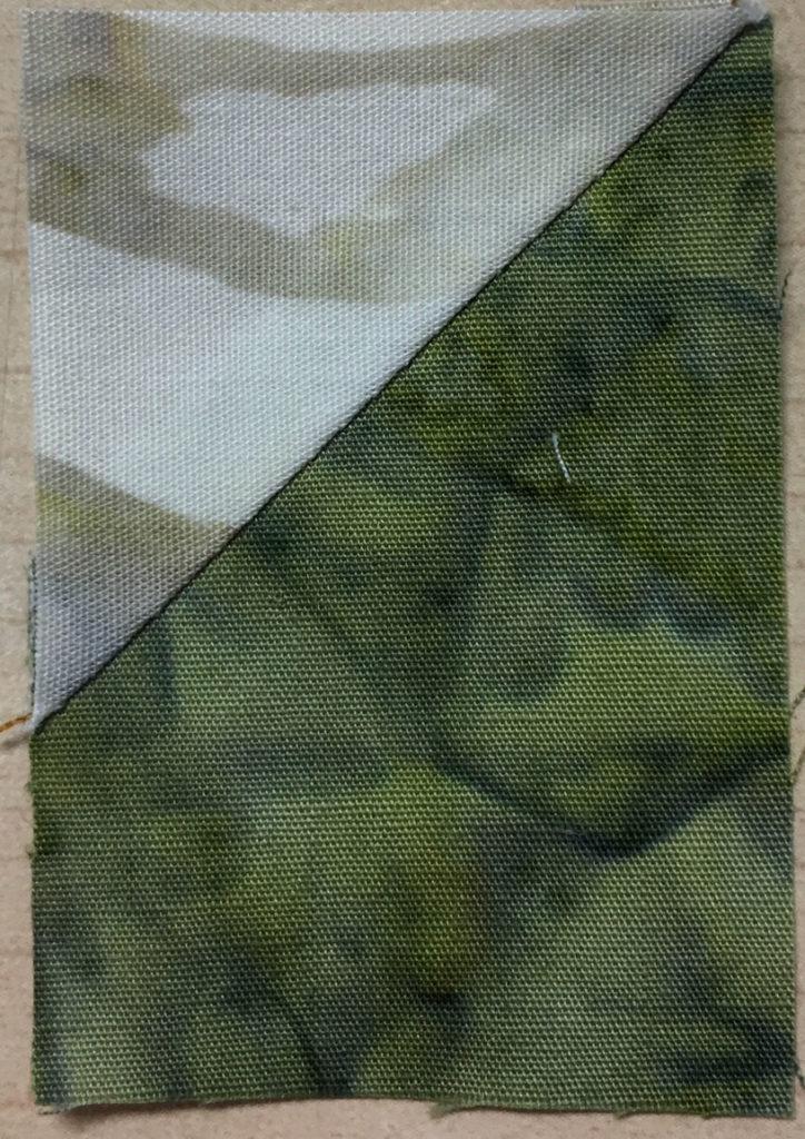 Photo 12 of the Stitch-and-Flip method (Unit 9)