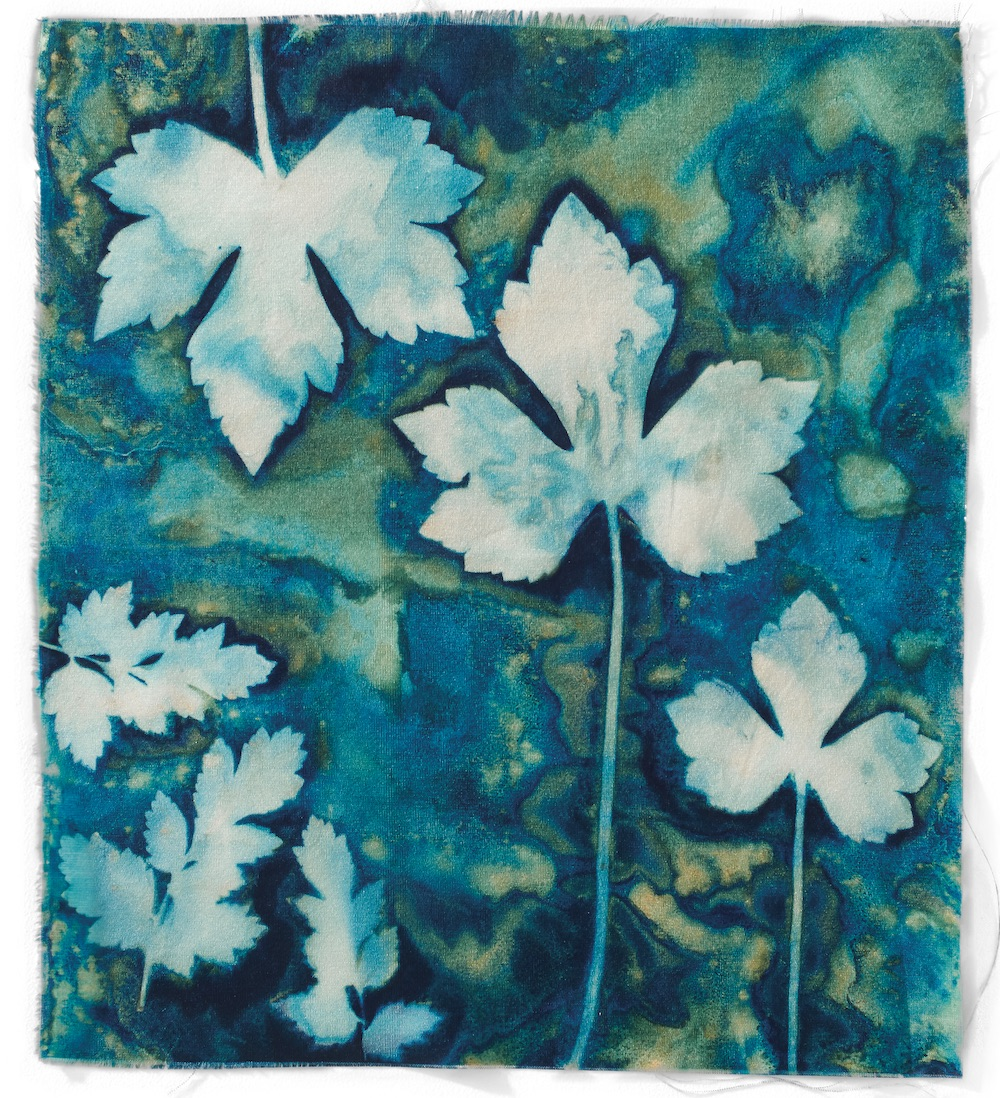 Cyanotype Fabric swatch by Lesley Riley